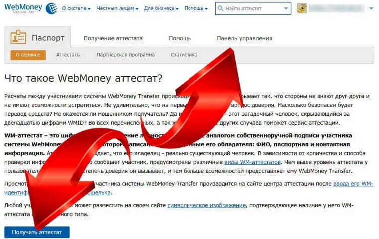 вебмани рублевый фото 10