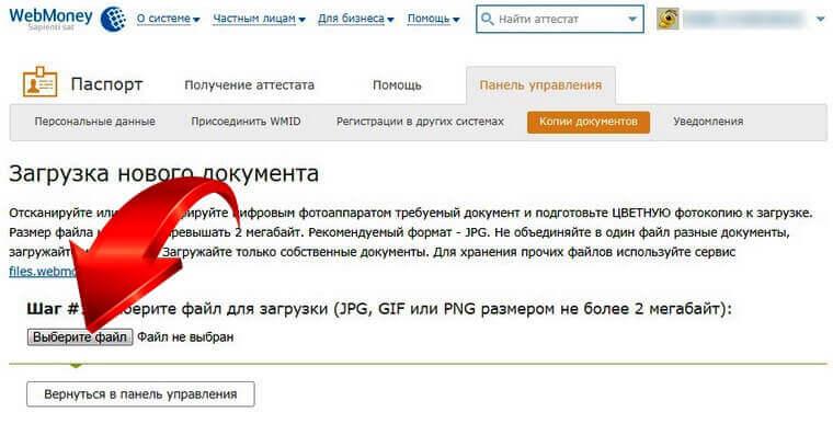 вебмани рублевый фото 12