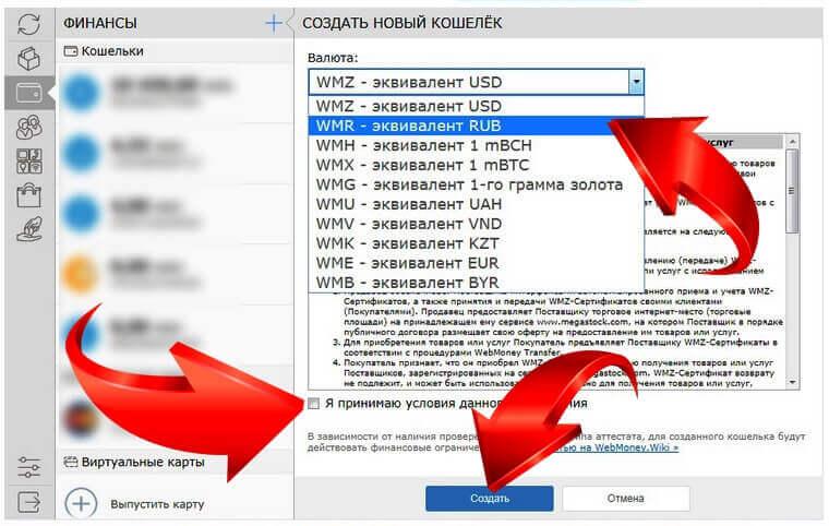 вебмани рублевый фото 7