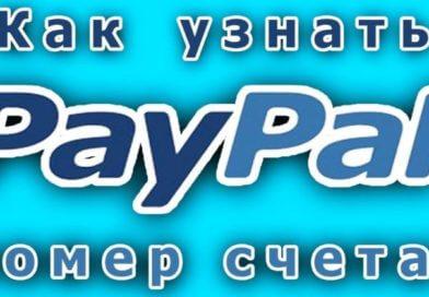 Номер счета и ID PayPal: как узнать данные в аккаунте