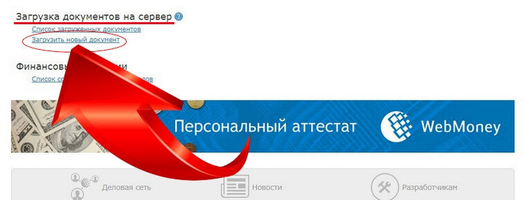 вебмани рублевый фото 11