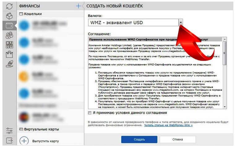 вебмани рублевый фото 6