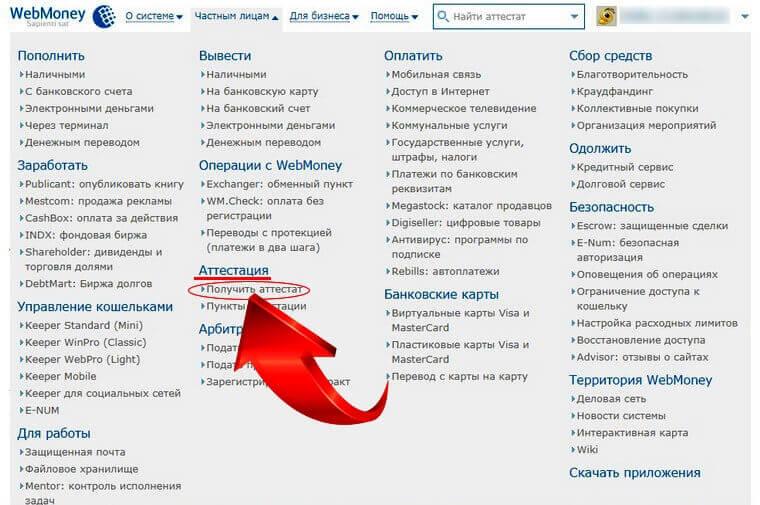 вебмани рублевый фото 9