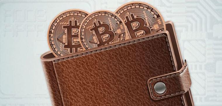 Лучший кошелек для биткоин кэш