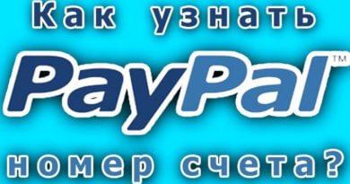 как узнать номер счета paypal