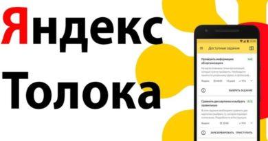 Яндекс толока отзывы сколько можно заработать