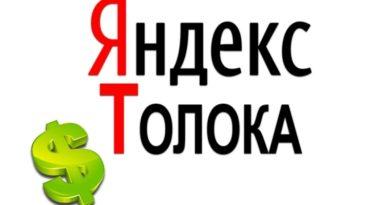 Яндекс Толока вывод денег